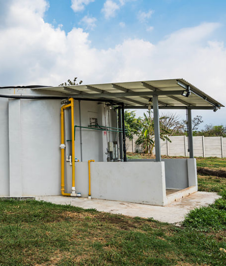Nelixia Prioritize green energy
