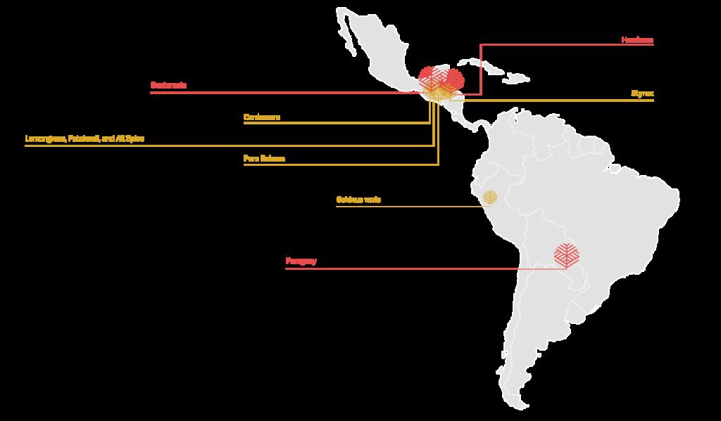 NELIXIA-MAP