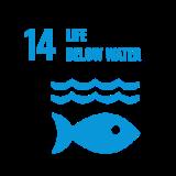 Nelixia Life Below Water